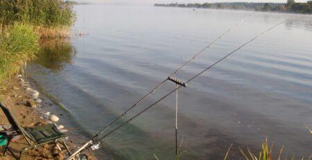 Тактика ловли рыбы на фидер