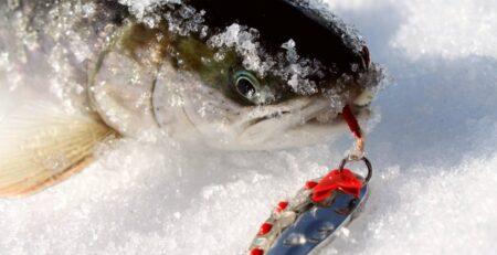 Ловля на блесну зимой
